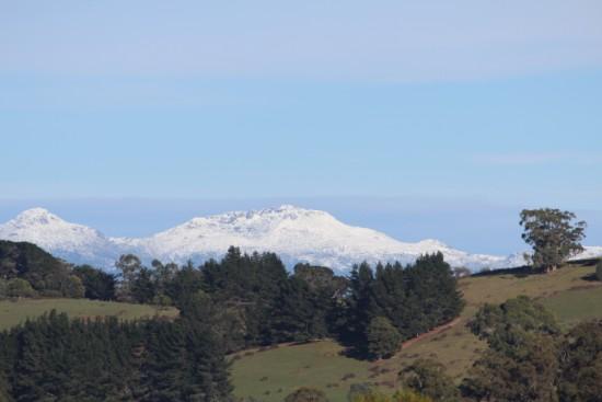 10a Cyg Mt Hartz